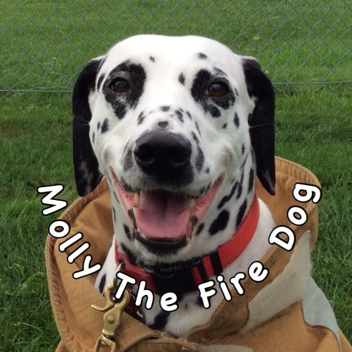 MOLLY THE FIRE DOG